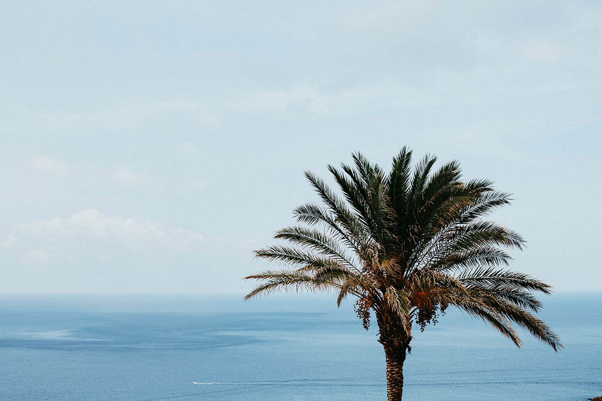 Pantelleria Eventi | the island | be inspired